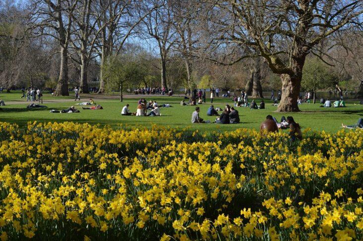 St. James Park in the springtime.