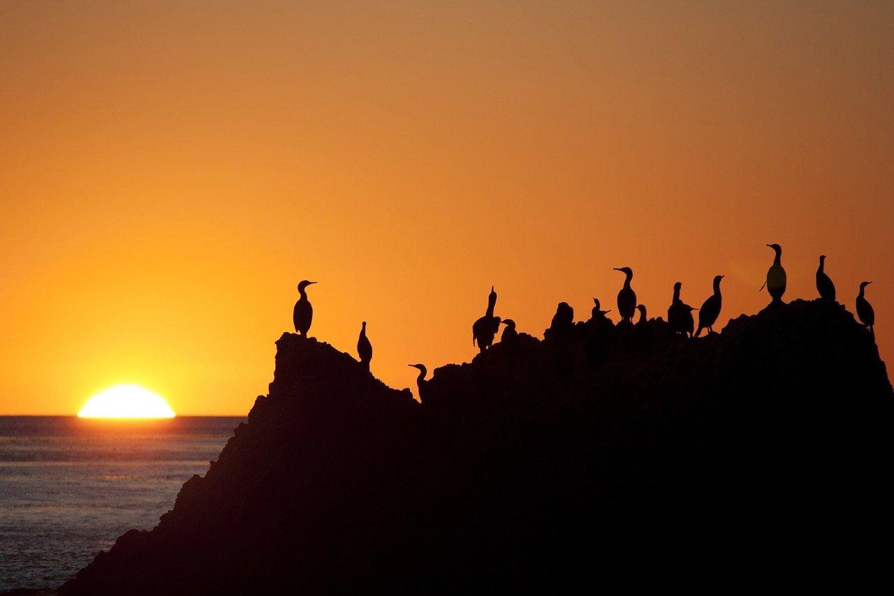 Sunset in Malibu, CA