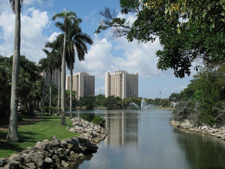 The University of Miami,